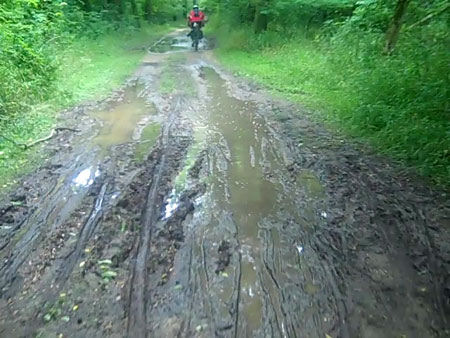 Rough conditions on the C&O towpath trail